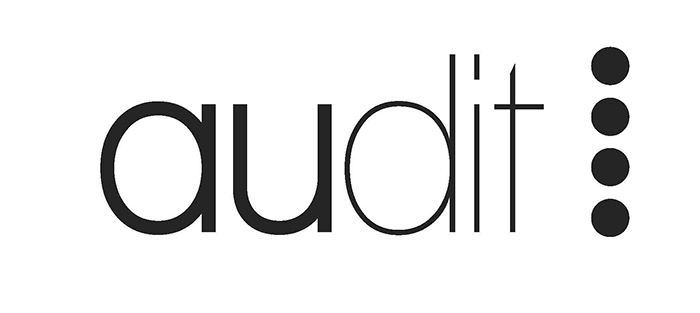 Logo Master AUDIT - Site IAUR